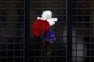 Flowers in the colors of the French flag are displayed on the gate of the French Embassy in Madrid, Spain, Saturday, Nov. 14, 2015. French President Francois Hollande said more than 120 people died Friday night in shootings at Paris cafes, suicide bombings near France's national stadium and a hostage-taking slaughter inside a concert hall. (AP Photo/Paul White)/PW117/696886973764/1511141822